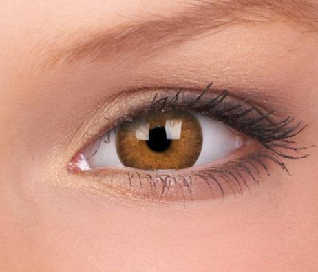 ColourVUE TruBlends Hazel Daily Disposable 14.2 mm Contact Lens